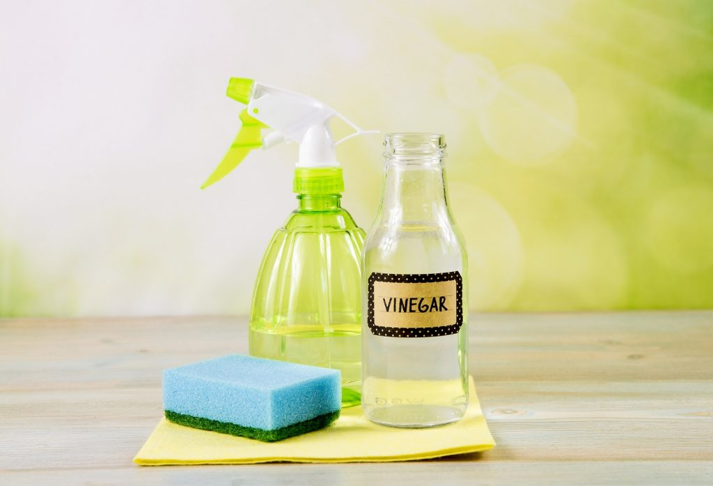 Vinegar, sponge and spray bottle all displayed on a table